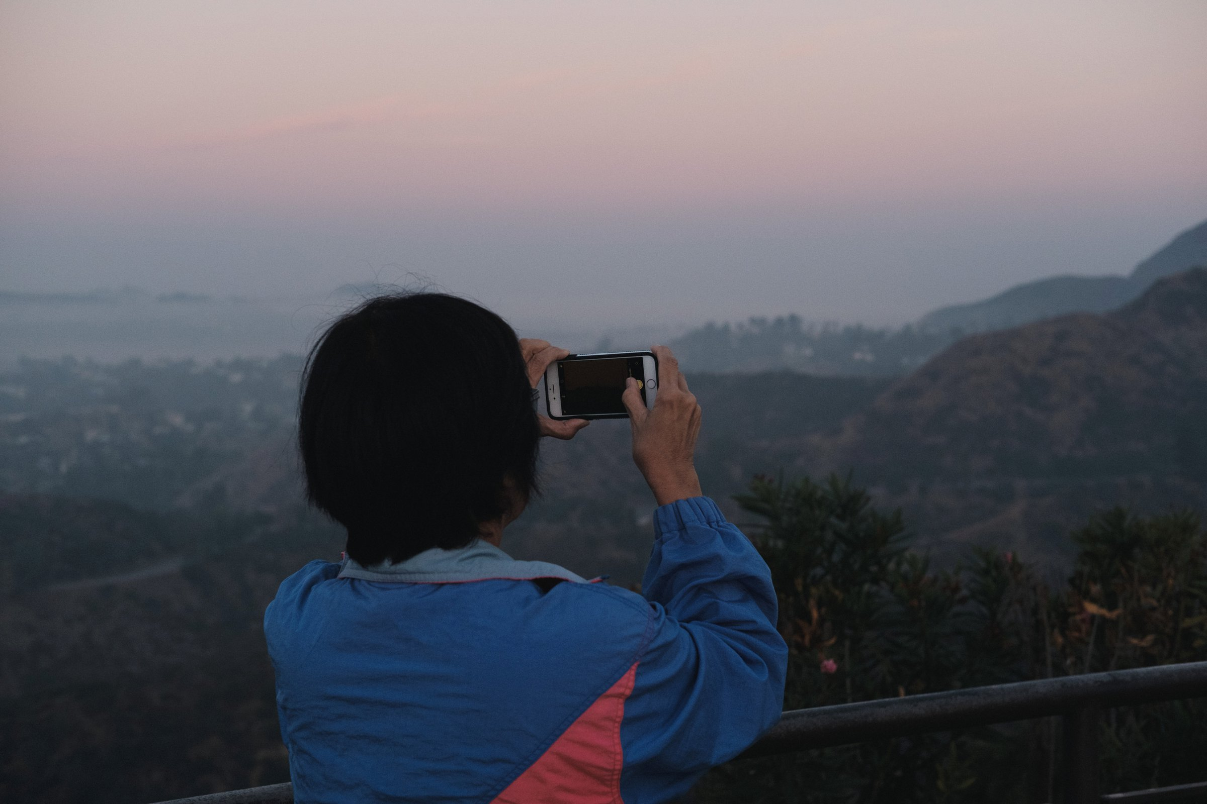 We weren't the only ones taking in the view of the Hollywood sign.