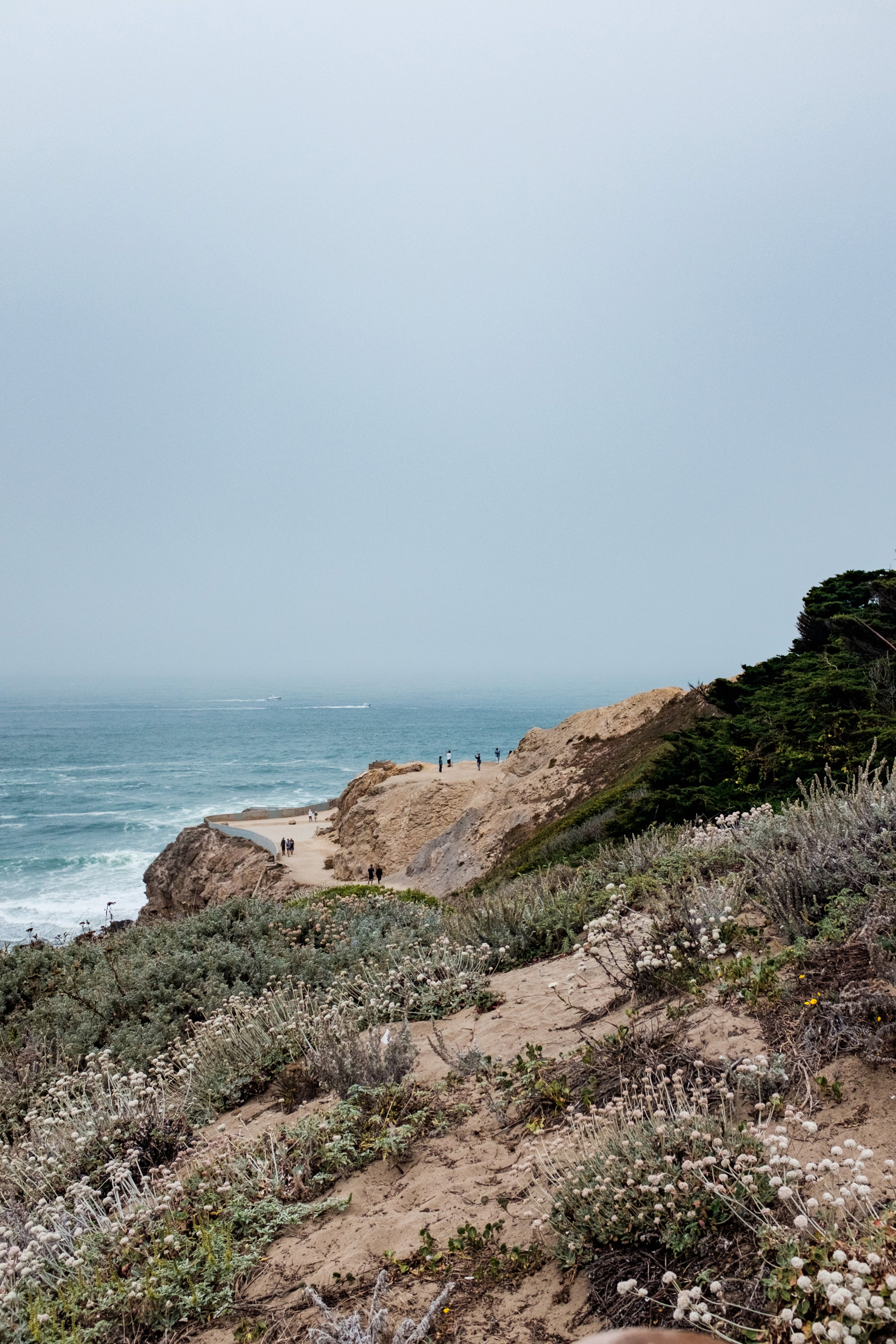 While this trip was cold and windy, the vegetation and growth contrasts beautifully with the coastal views.