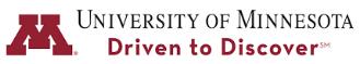 University of Minnesota  Infant and Early Childhood Mental Health Certificate Program