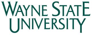 Wayne State University (Michigan) Merrill Palmer Skillman Institute  Dual Title in Infant Mental Health