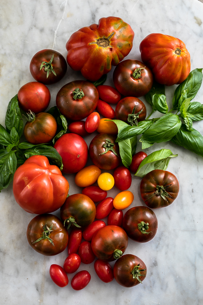 Tomatoes-2.jpg