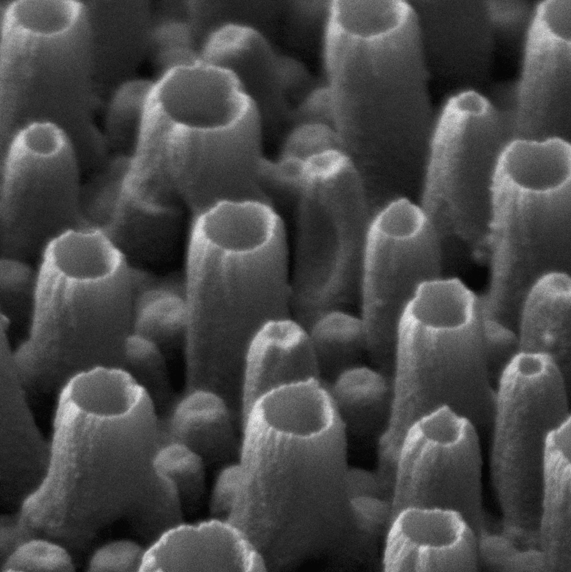 Research - Nanotubes formed by electrodeposition of thiophene-based monomers(source article)