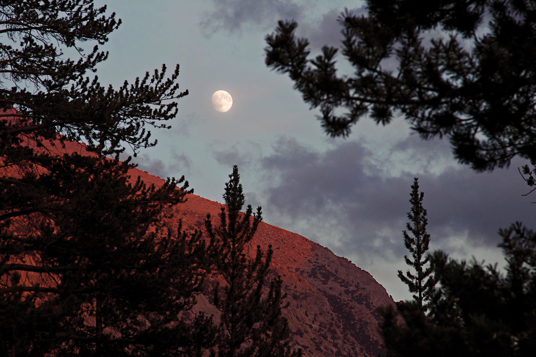 Moonrise over Vidette Meadow in Kings Canyon National Park
