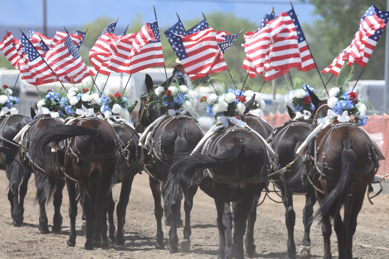 Mule Days has been an Eastern Sierra tradition since 1969 ( muledays.org )