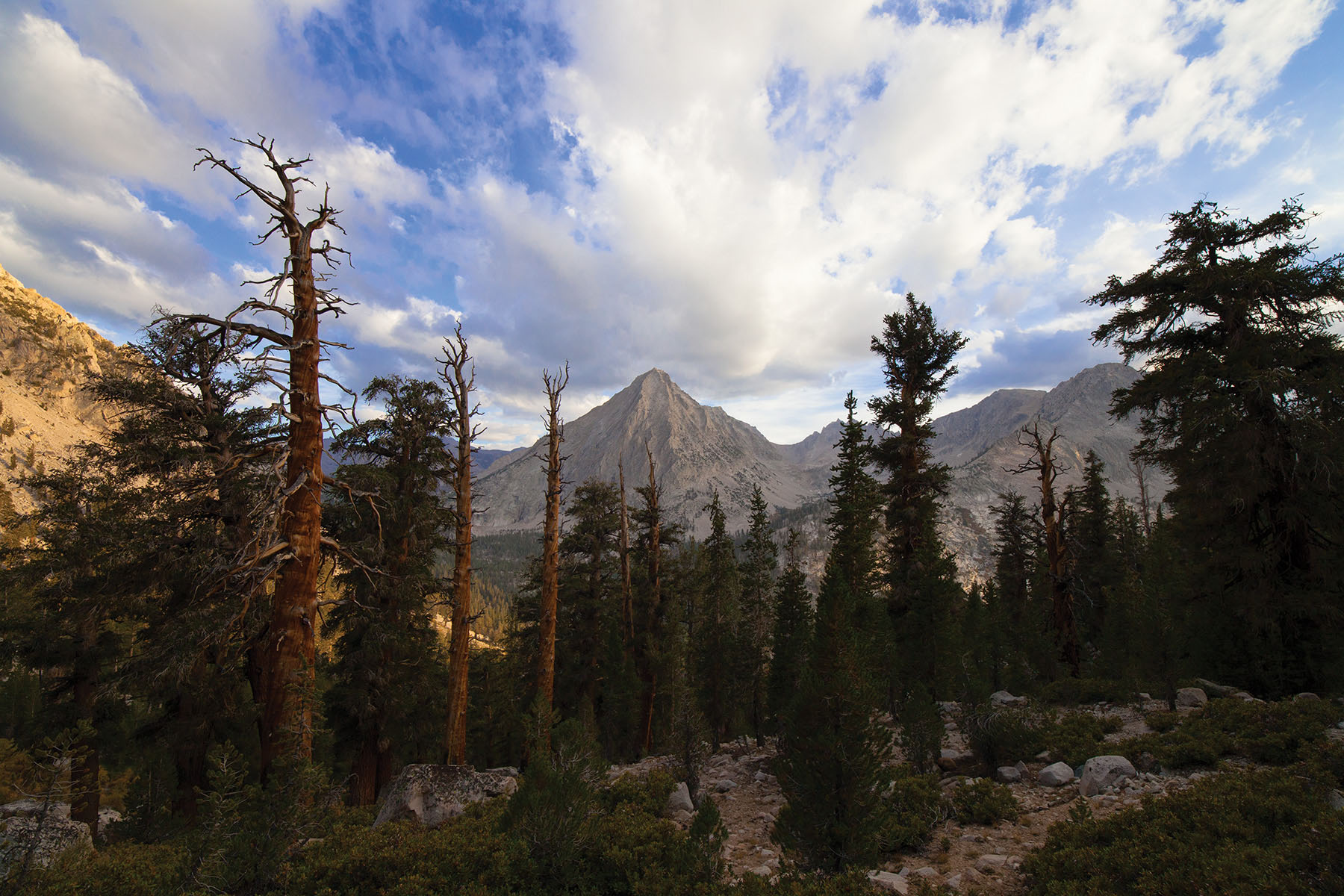The High Sierra backcountry offers sweeping mountain views