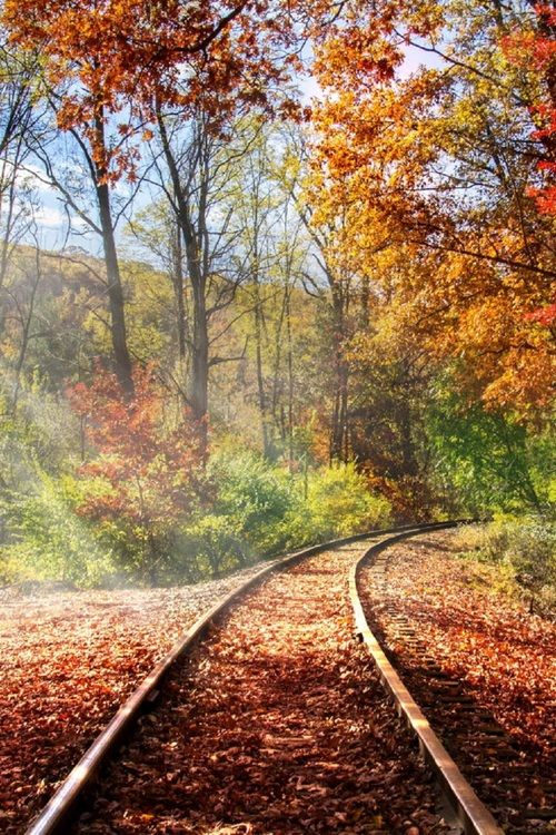 Autumn train tracks.jpg