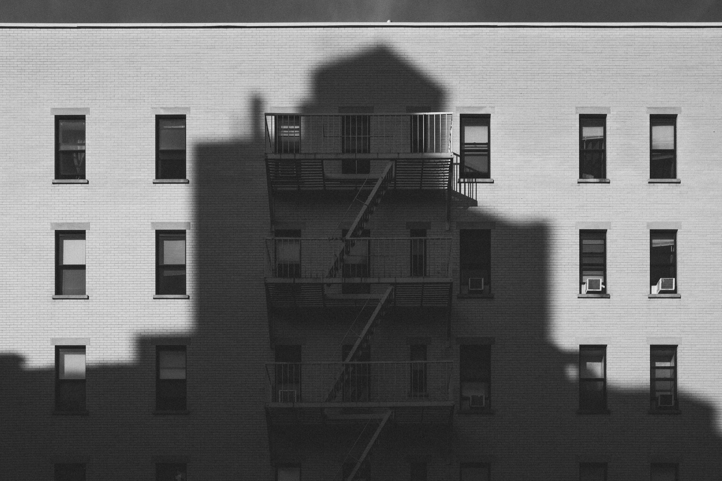 EH2019_Shadow-Escape.jpg