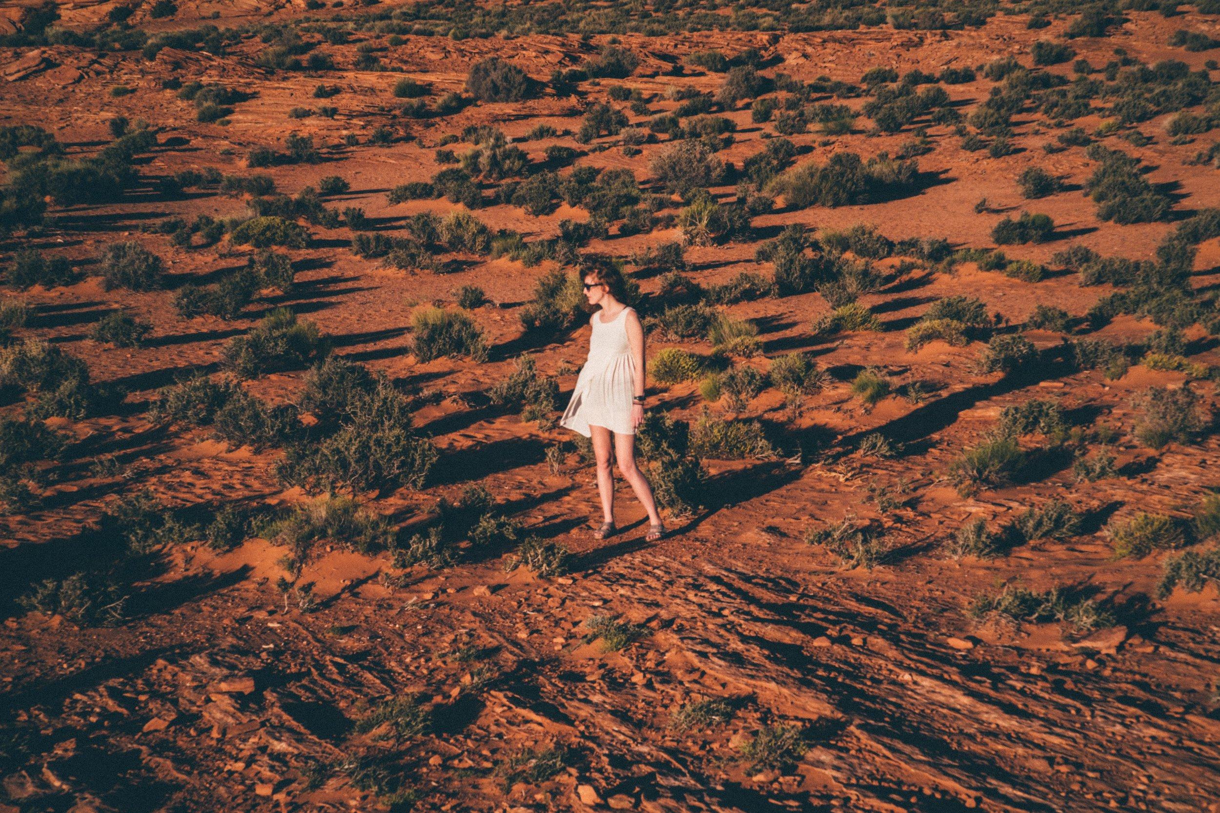 EH2056_Desert-Angel.jpg