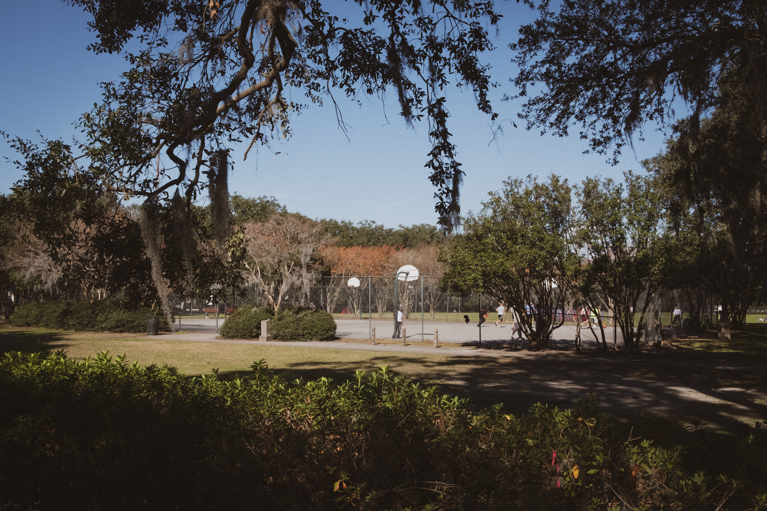 EH2384_A-Park-In-Savannah.jpg