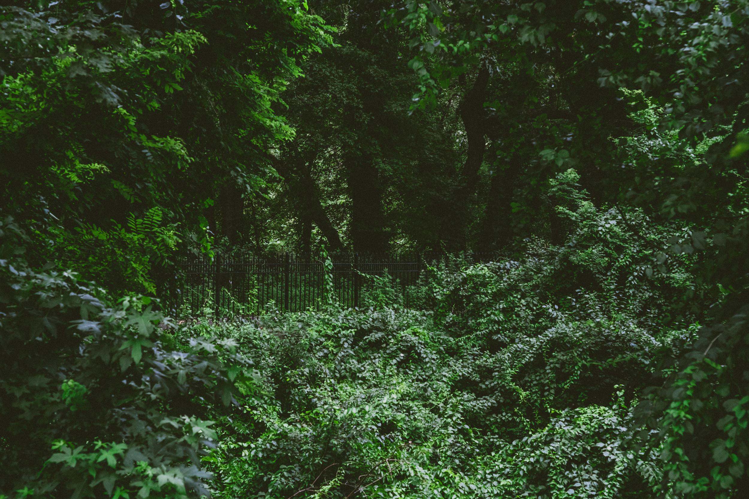 EH2454_Highland-Park.jpg