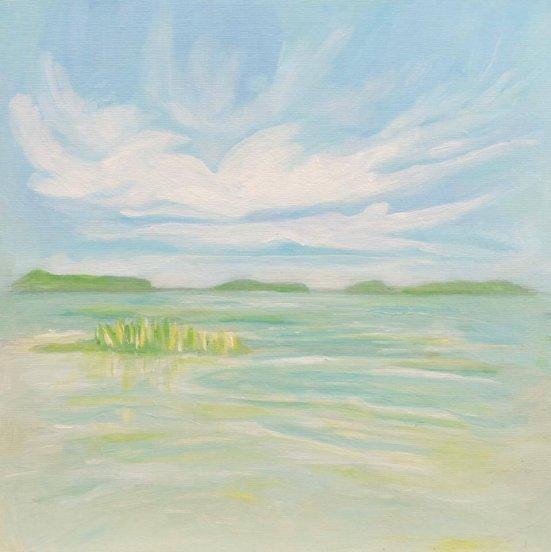 Marshlands in Oliphant