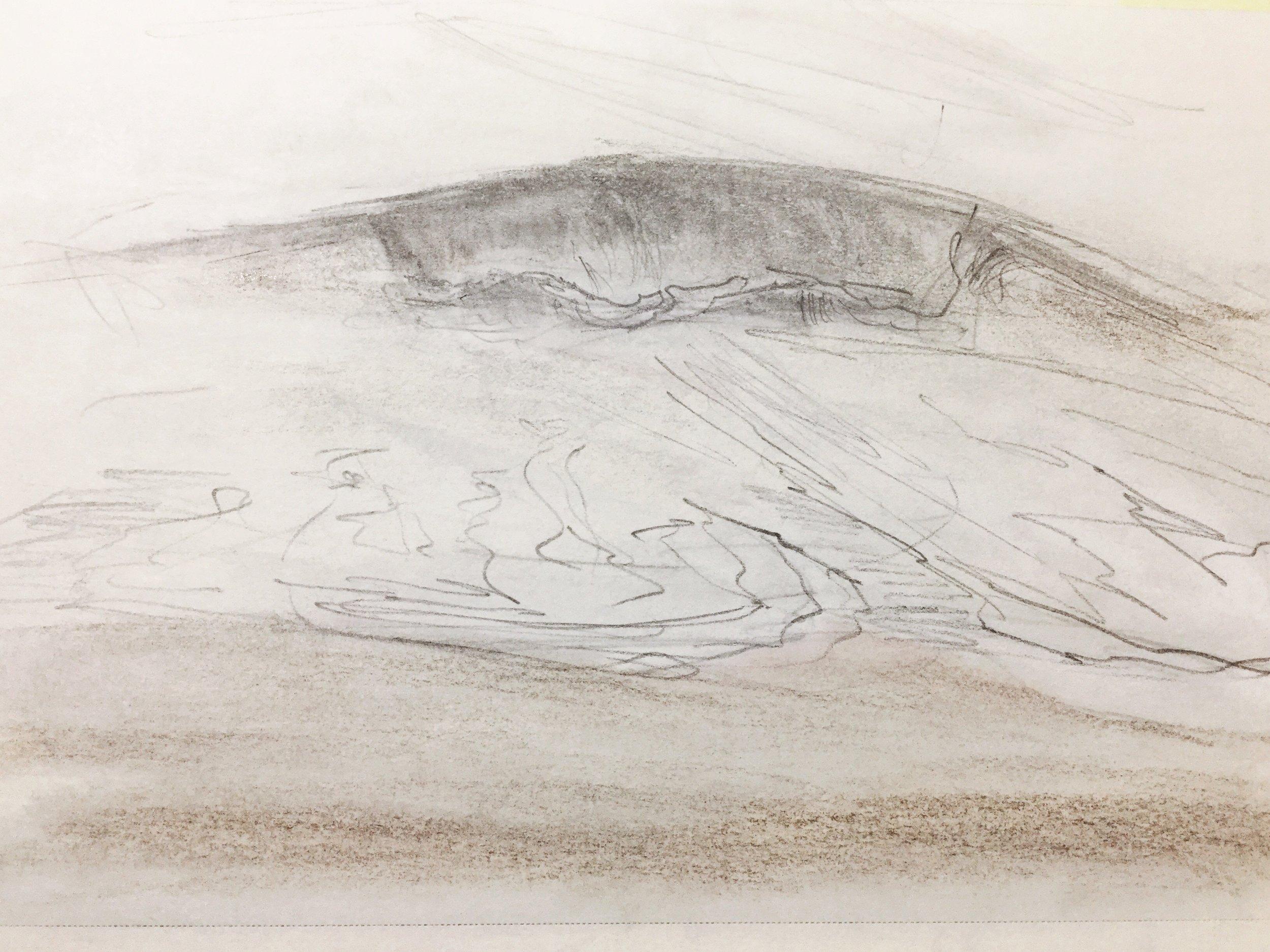 grace-lane-smith-art-wave-study.JPG