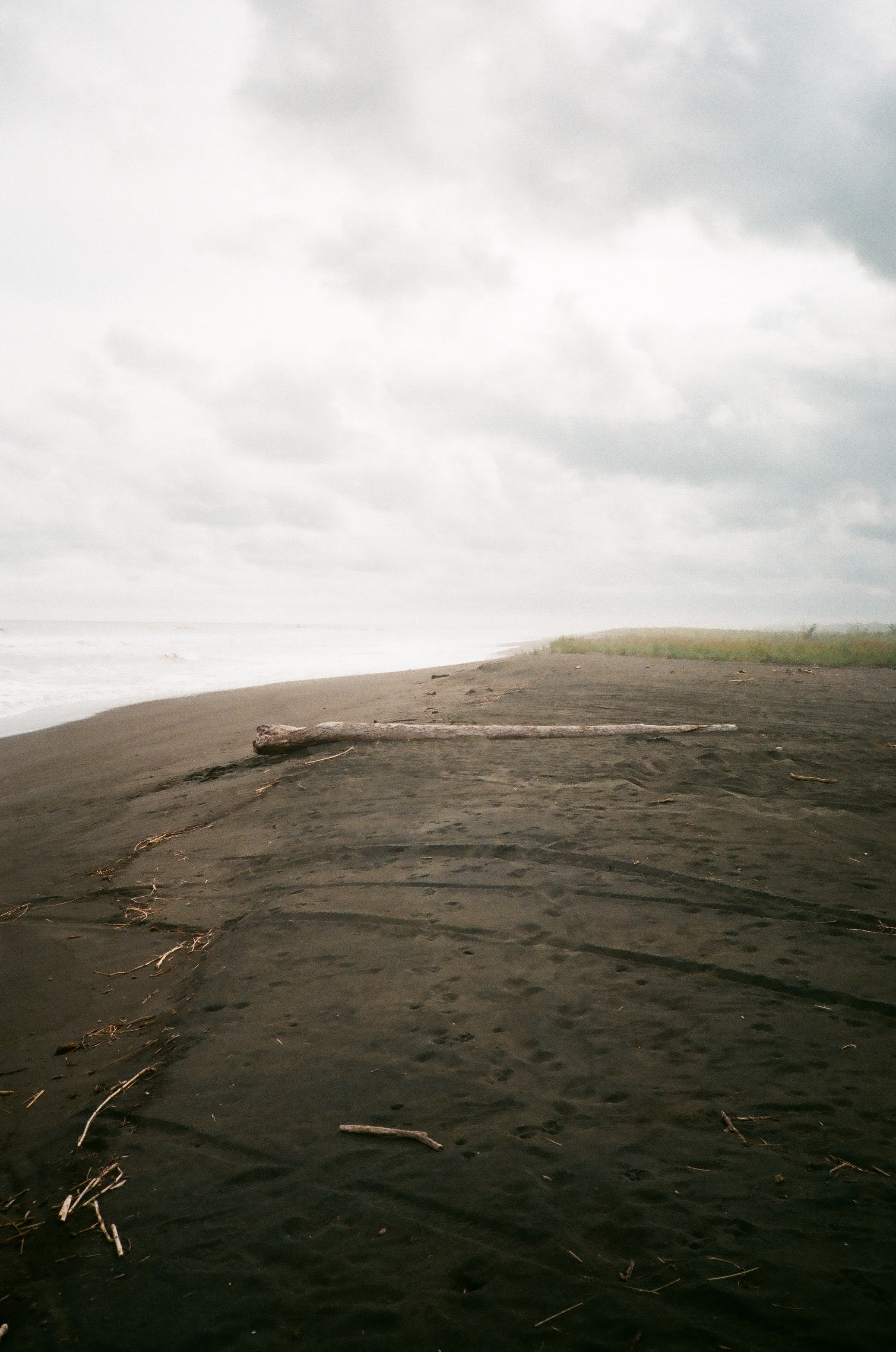 Playa Palo Seco, Puntarenas Province, Costa Rica
