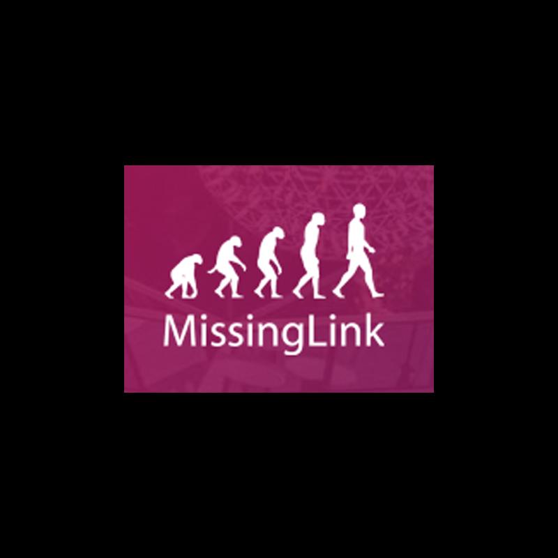 Missing Link.png