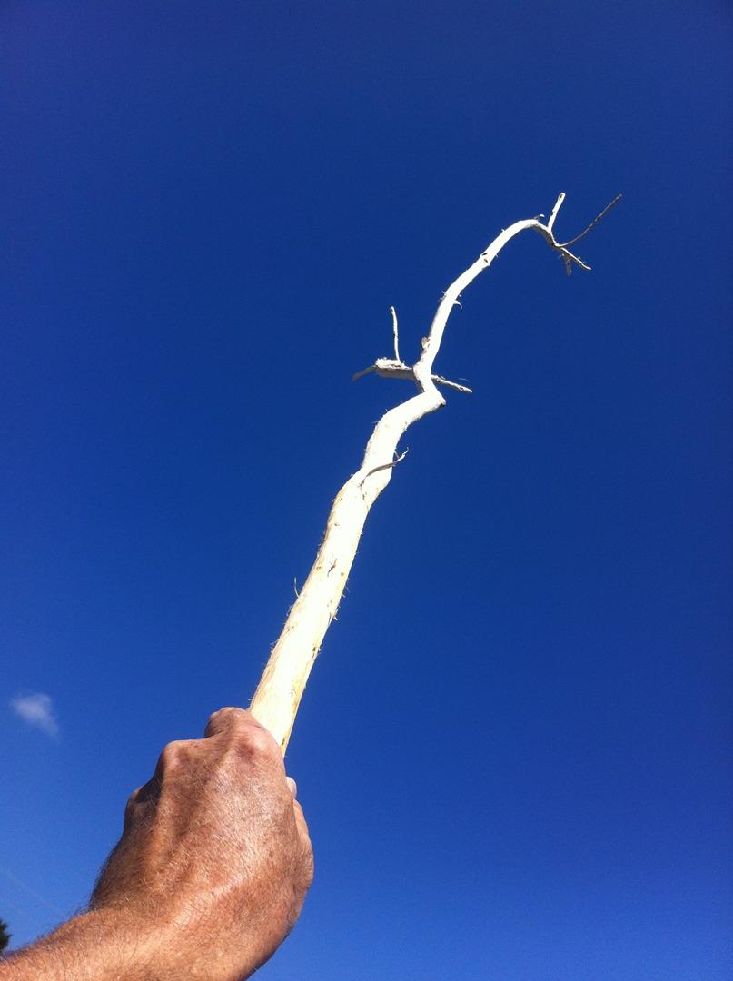 Hand Stick series 1.jpeg