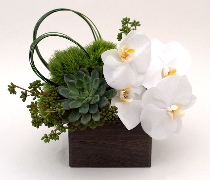 box with dianthus and phaels.jpg