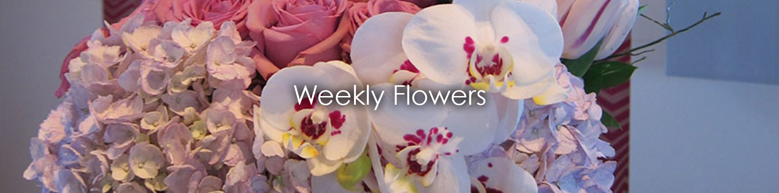 Weekly Flowers.jpg