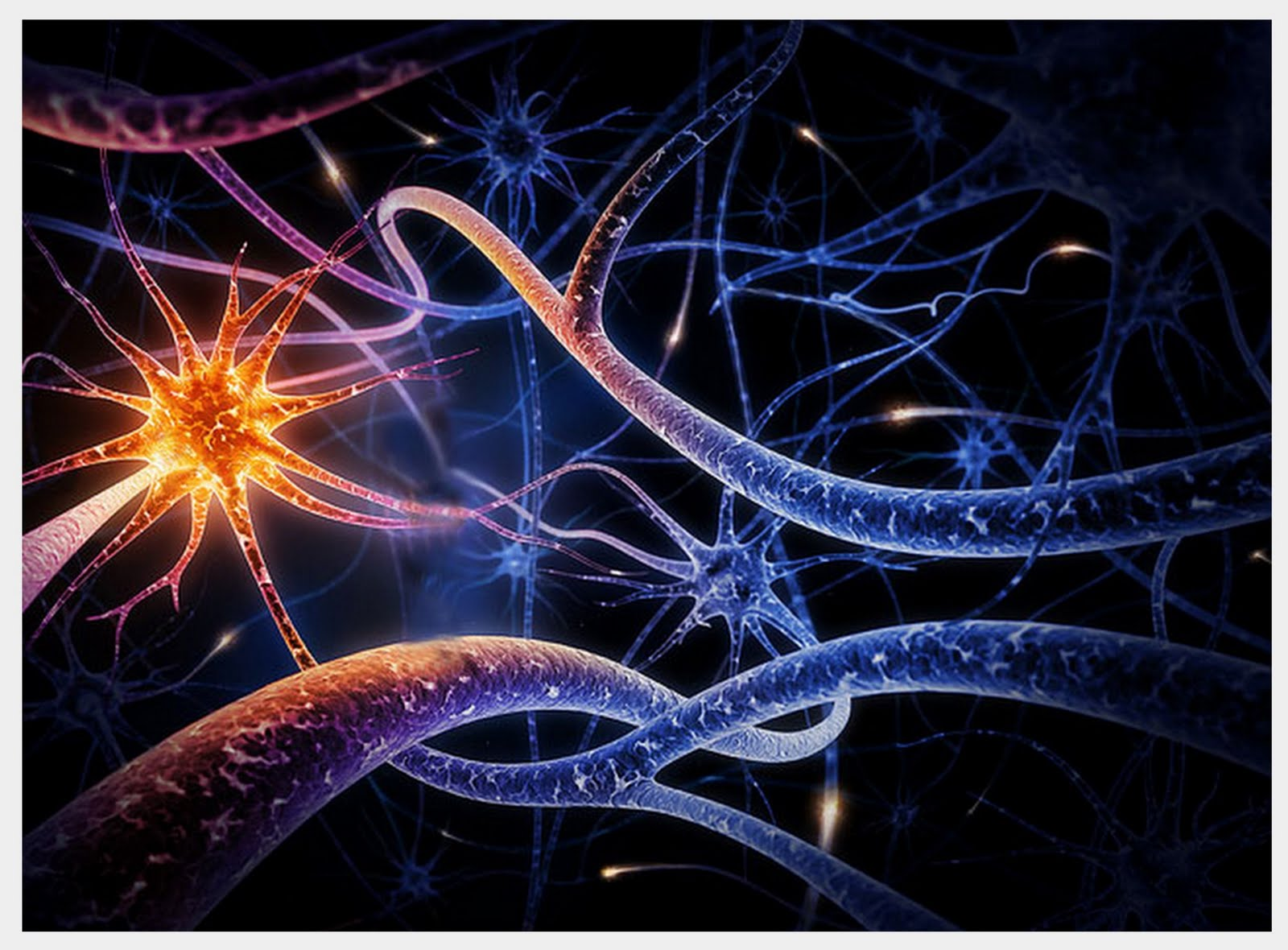 Neuropeptides are small protein-like molecules ( peptides ) used by neurons to communicate with each other.