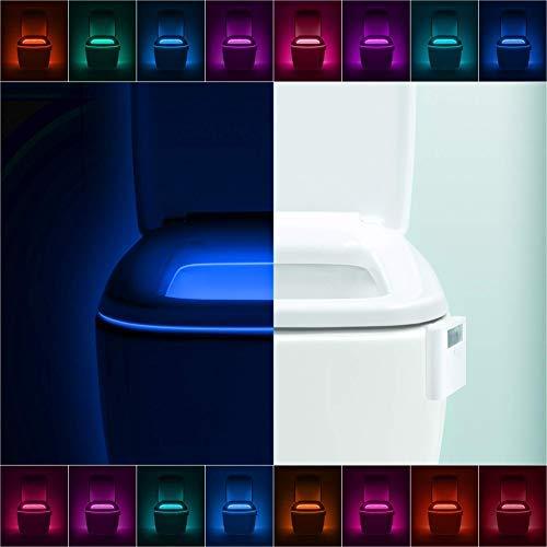 Toilet bowl nightlight