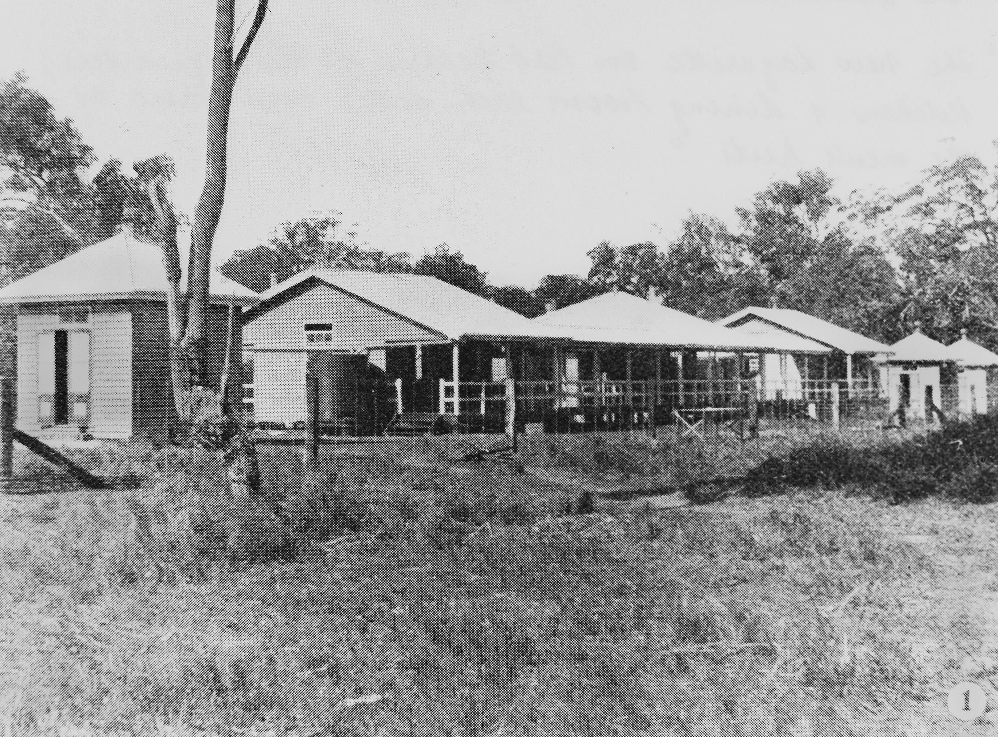 Peel Island lazarette huts and kitchen buildings, 1907