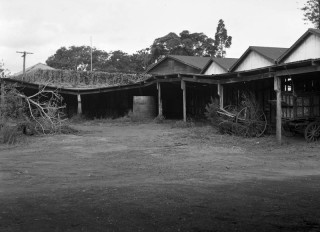 Sheds at the decommissioned sanitary depot in 1949. (Brisbane City Archives, BCC-B54-276)