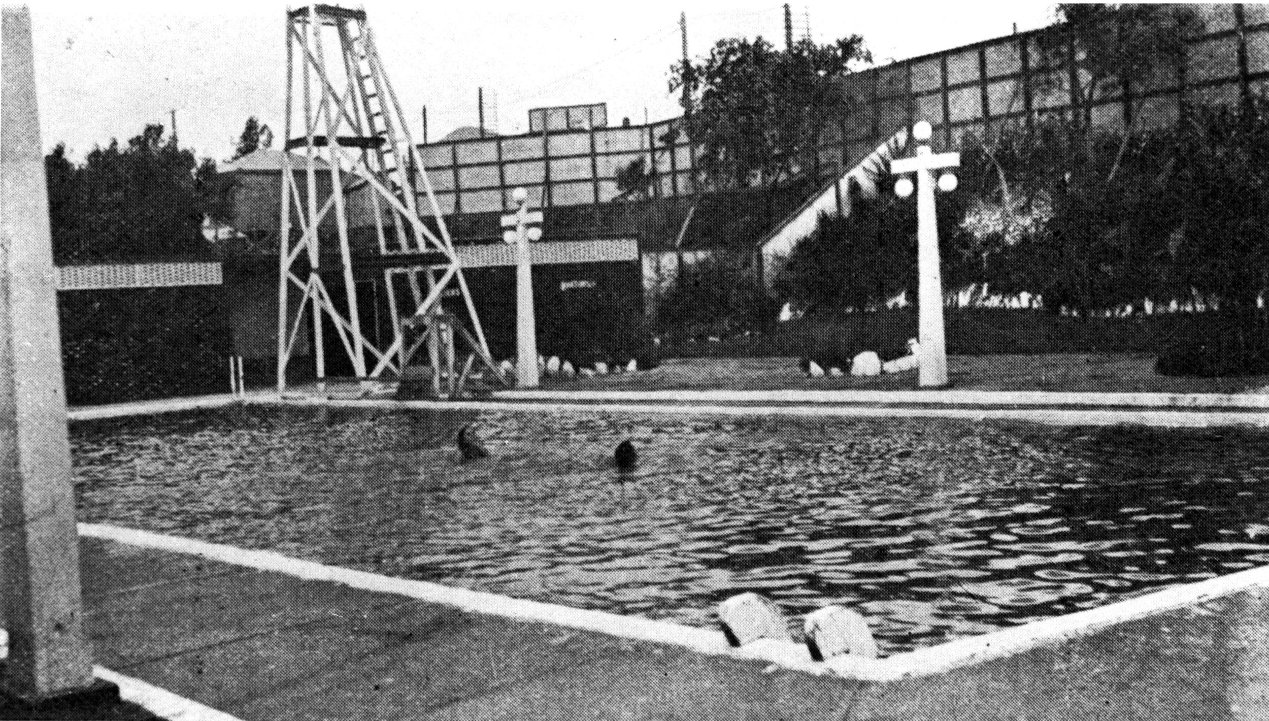 Swimming pool at Paddington, Brisbane, ca 1917, photograph courtesy of SLA, neg no 67703