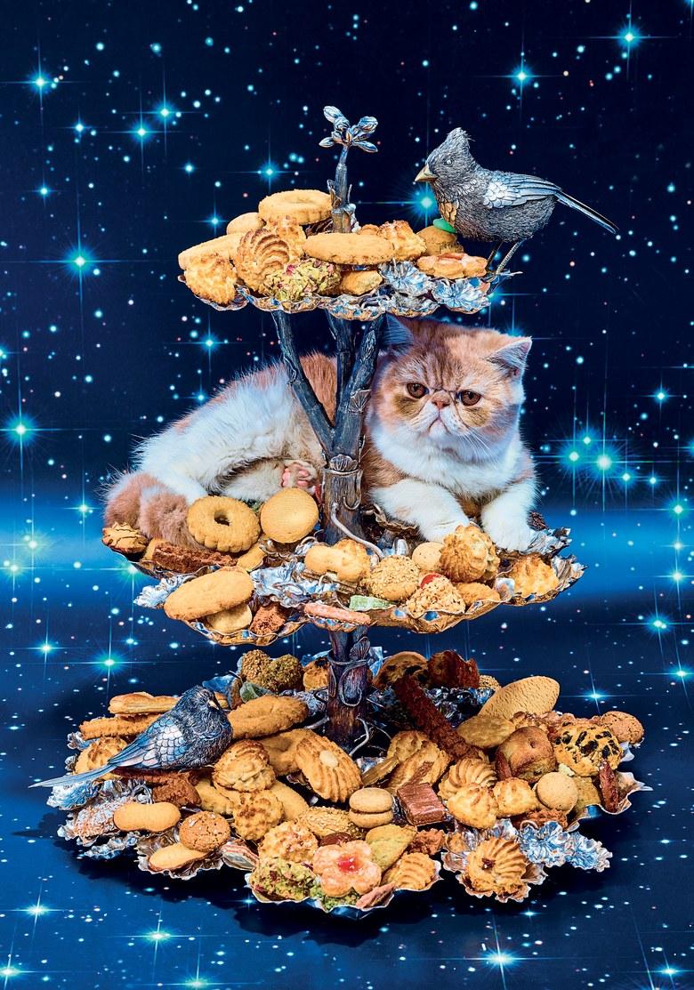 european-cookies-2-large.jpg