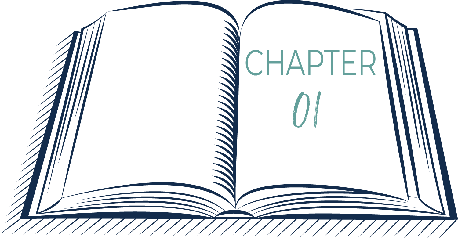 Chapter 01