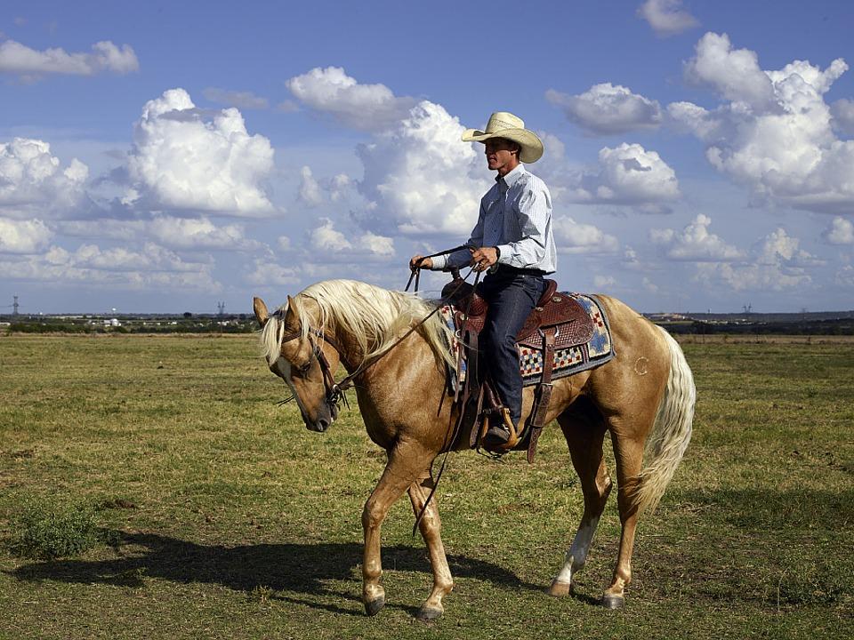 cowboy-746992_960_720_CC.jpg
