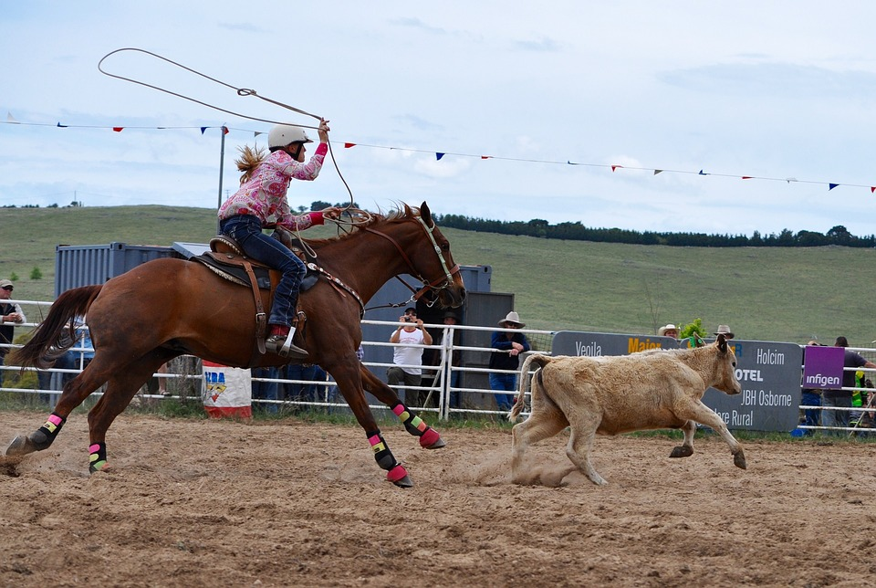 rodeo-1249437_960_720_CC.jpg