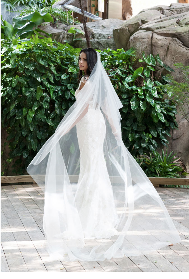 Toni Federici - Toni Federici is the only company in America where skilled artisans cut, sew and embellish couture veils by hand. The Toni Federici veil collection can best be described as one of understated elegance and timeless sophistication.Dedication to the bride's vision is a hallmark feature of the collection, as Toni is always willing to make modifications.