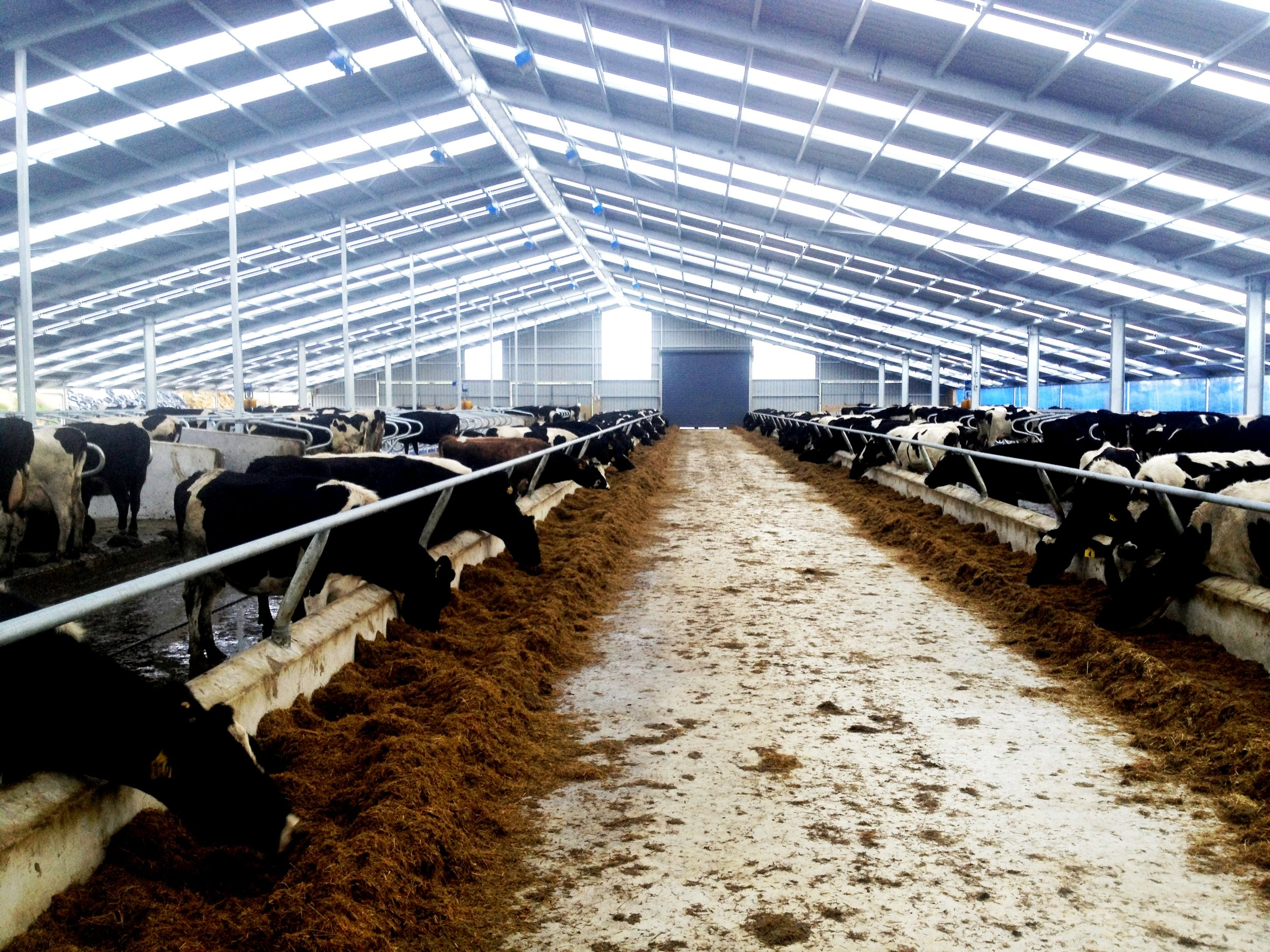 Burnett Barn 076.jpg