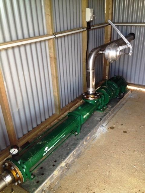 Sabre pumps.jpg