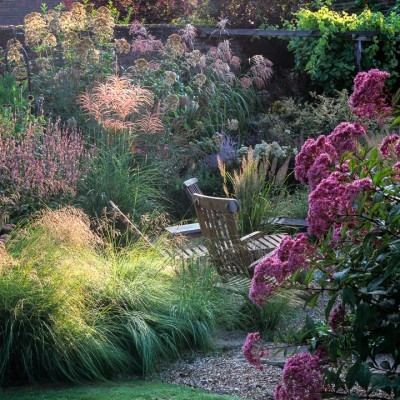 nicola stocken photo of garden