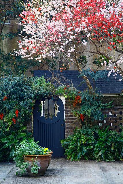 Doug Hickok photo of courtyard garden