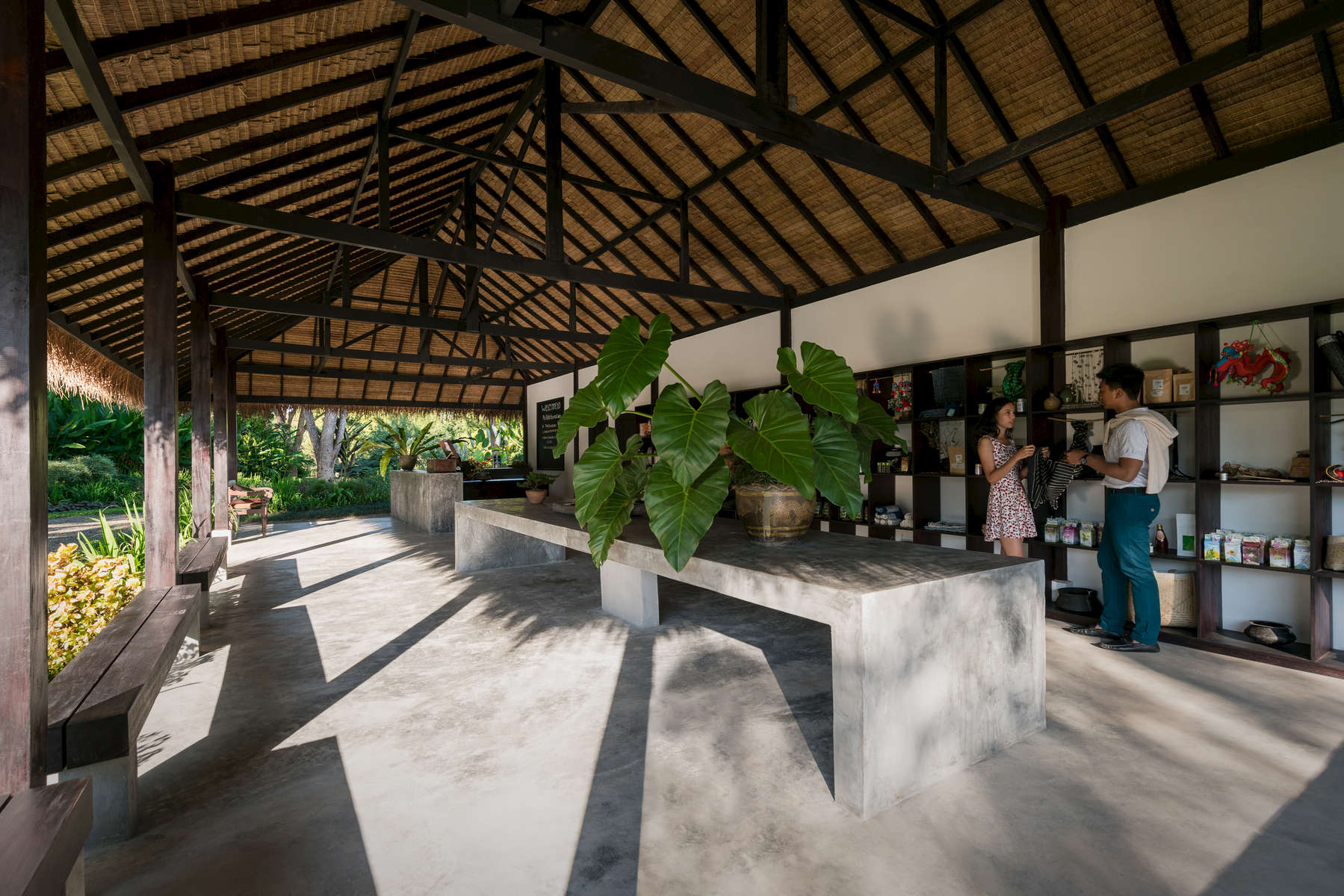 Laos-Luang-Prabang-Pha-Tad-Khe-Botanical-Garden-Photo-by-Cyril-Eberle-DSC04669-vignette-1.jpg