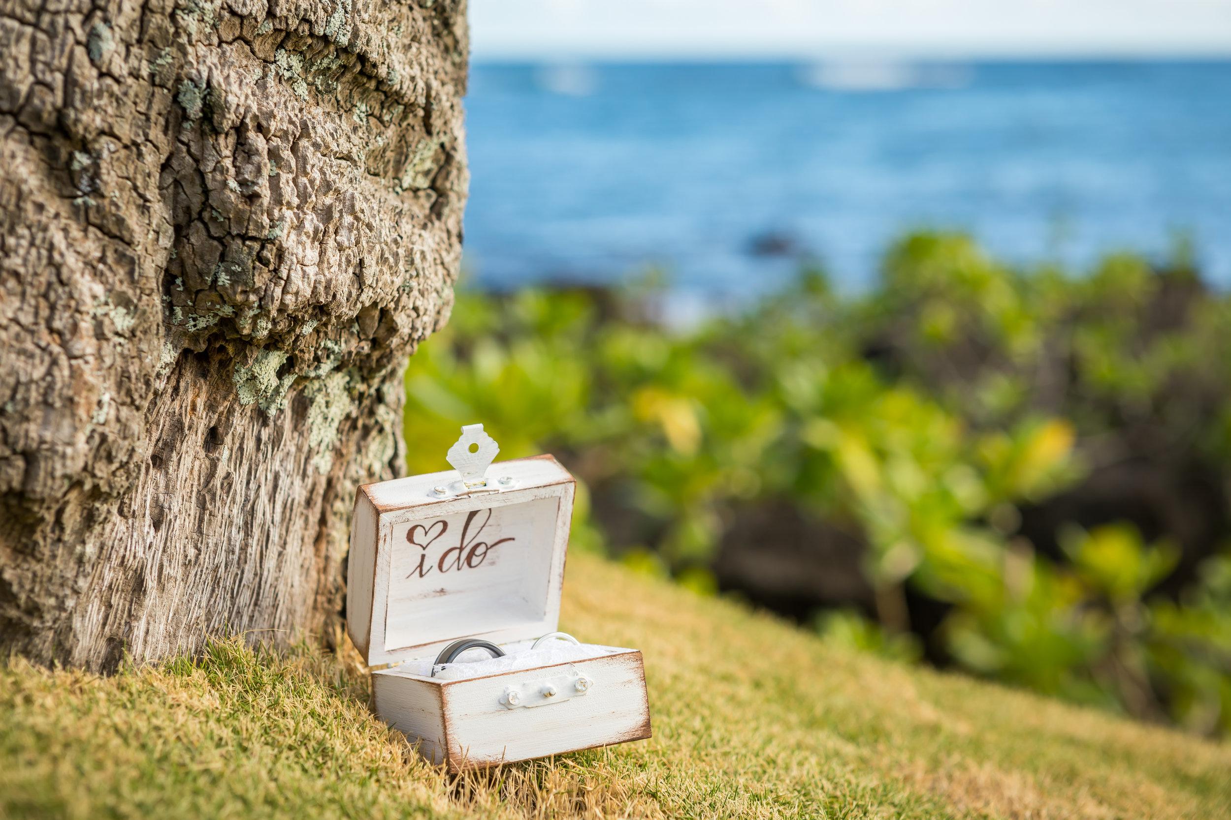 Kauai Beach Wedding Photograph-35