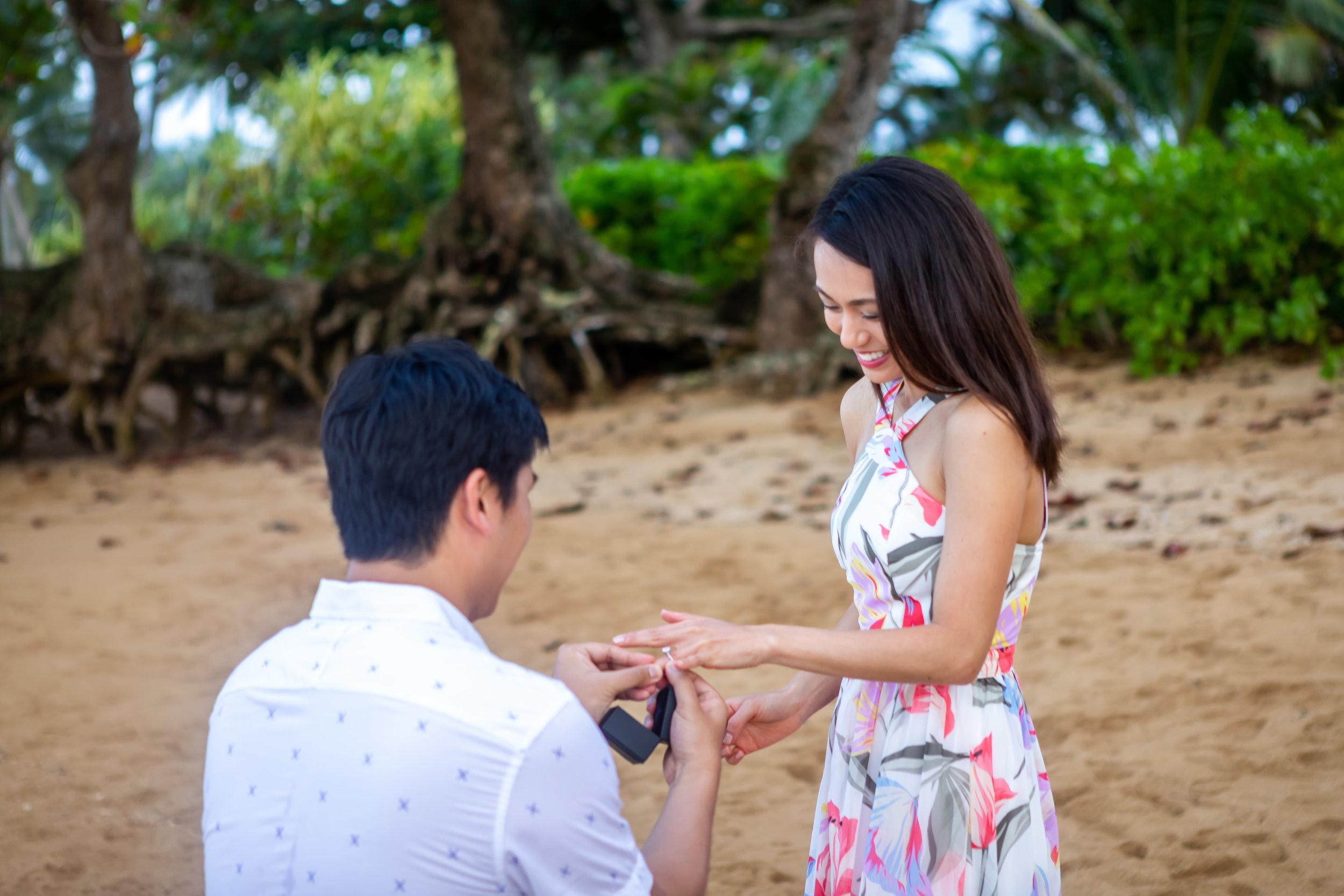 Kauai Surprise Engagement Photo 23