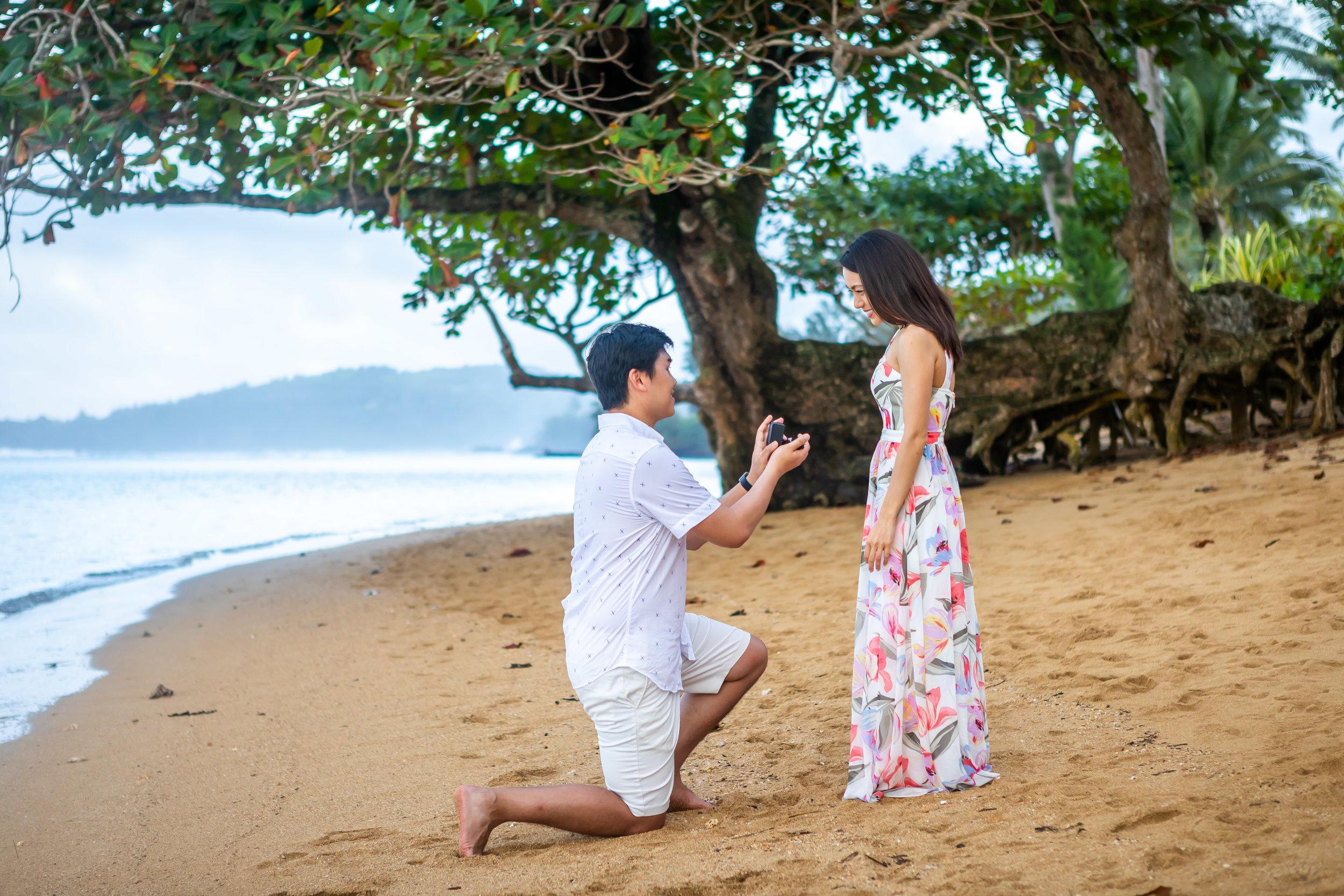 Kauai Surprise Engagement Photo 19