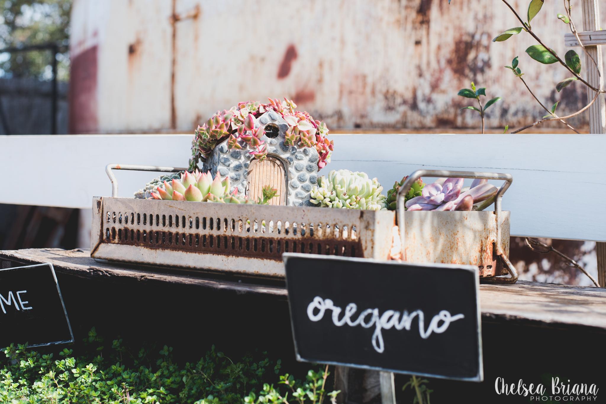 Chelsea Briana Photography magnolia market