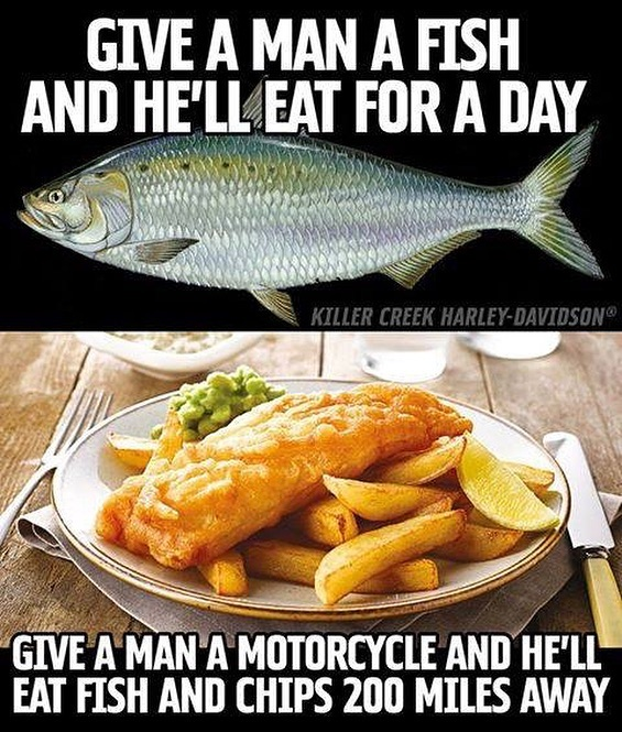 Why wouldn't you put on 200 miles? This is #America land of the #free  #bikers #biker #harleydavidson