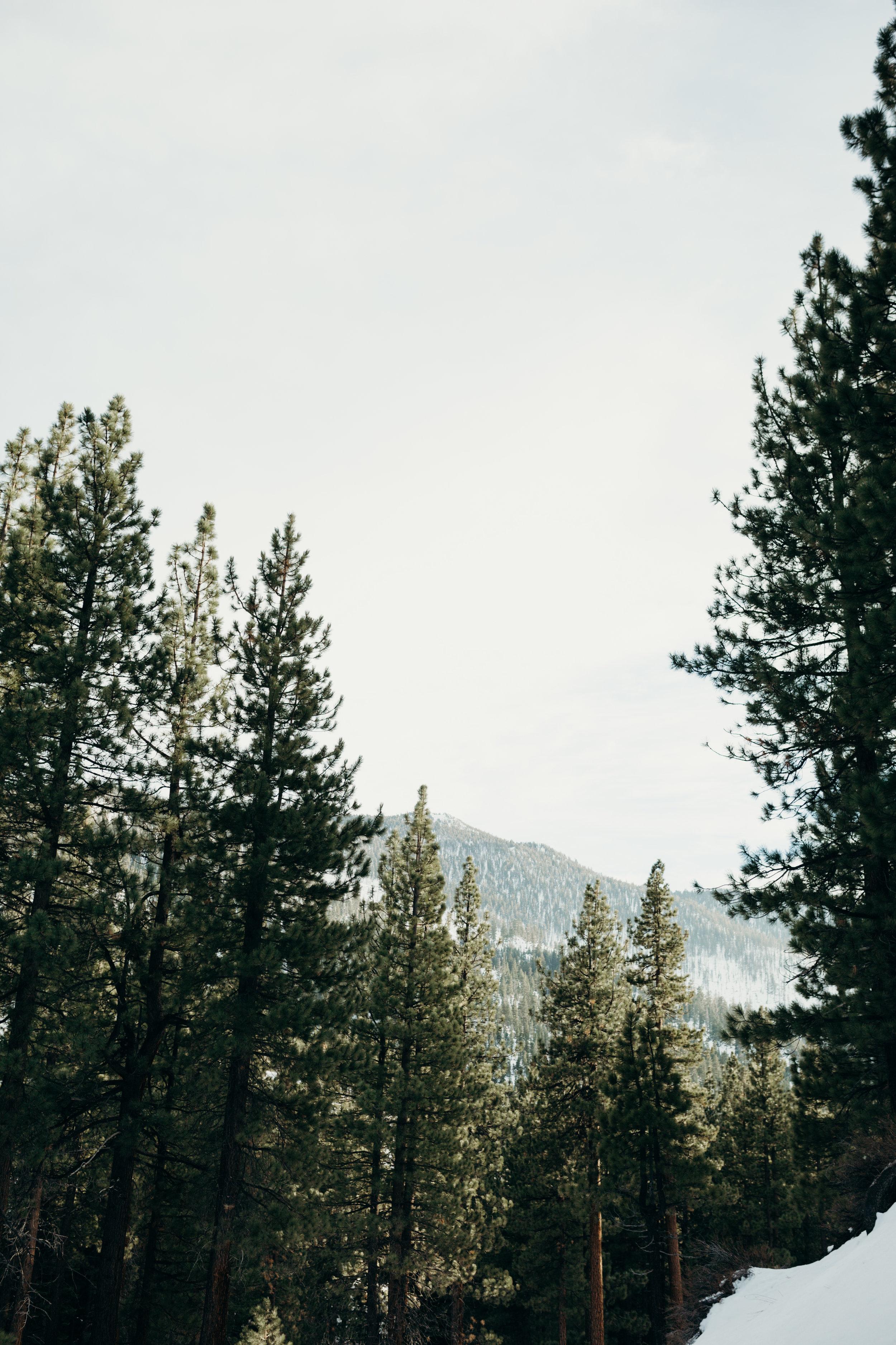 tahoe_trip_2019-130.jpg