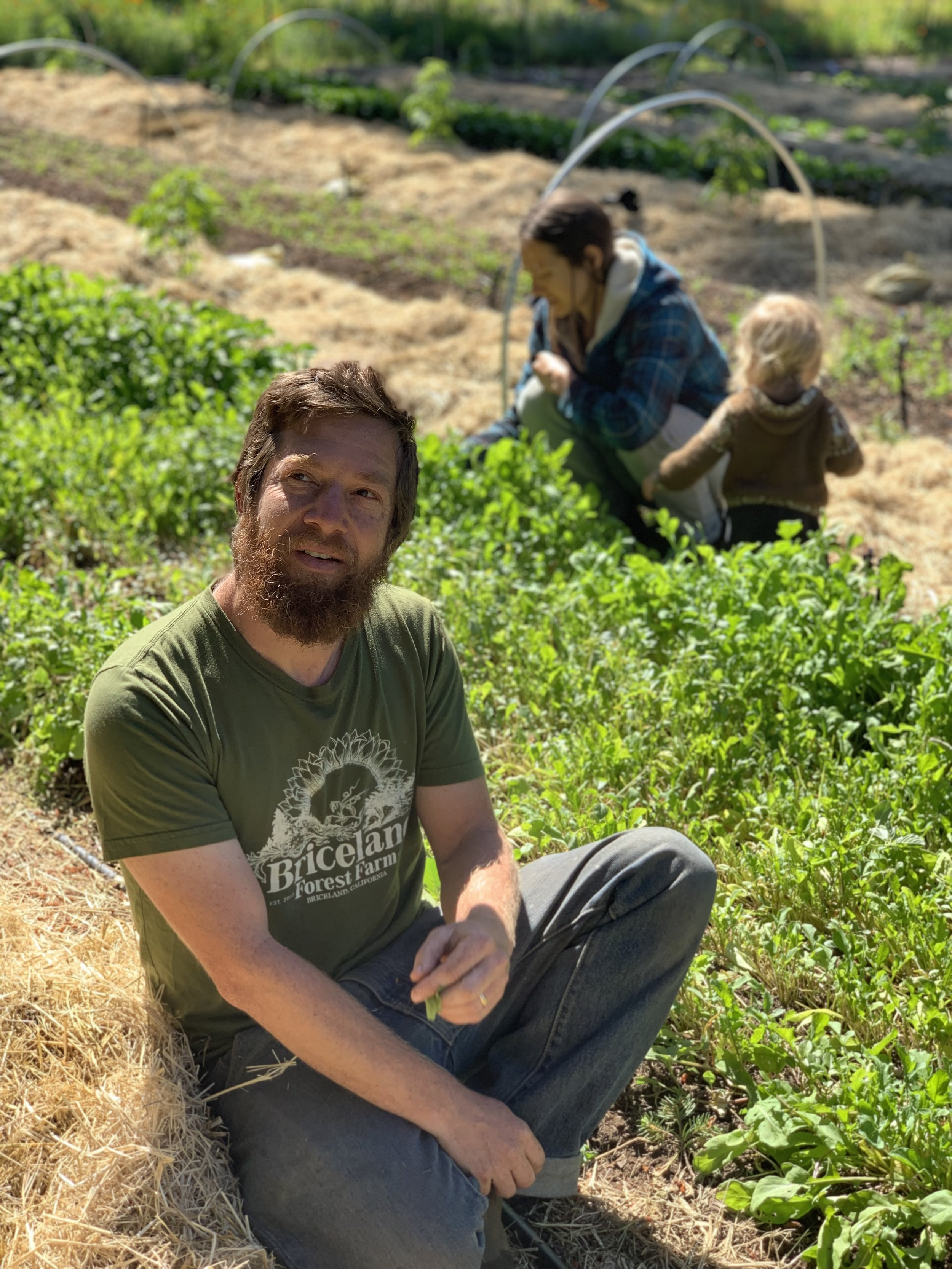 Follow the  @BricelandForestFarm  family on Instagram for regenerative farming tips. And explore their website at  Bricelandforestfarm.com .