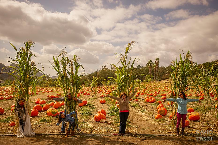 bates-nut-farm-pumpkin-patch.jpg