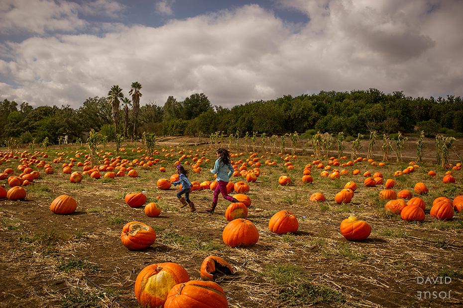 0006_cumple_suegro_bates-nut-farm-pumpkin-patch_101013-edit
