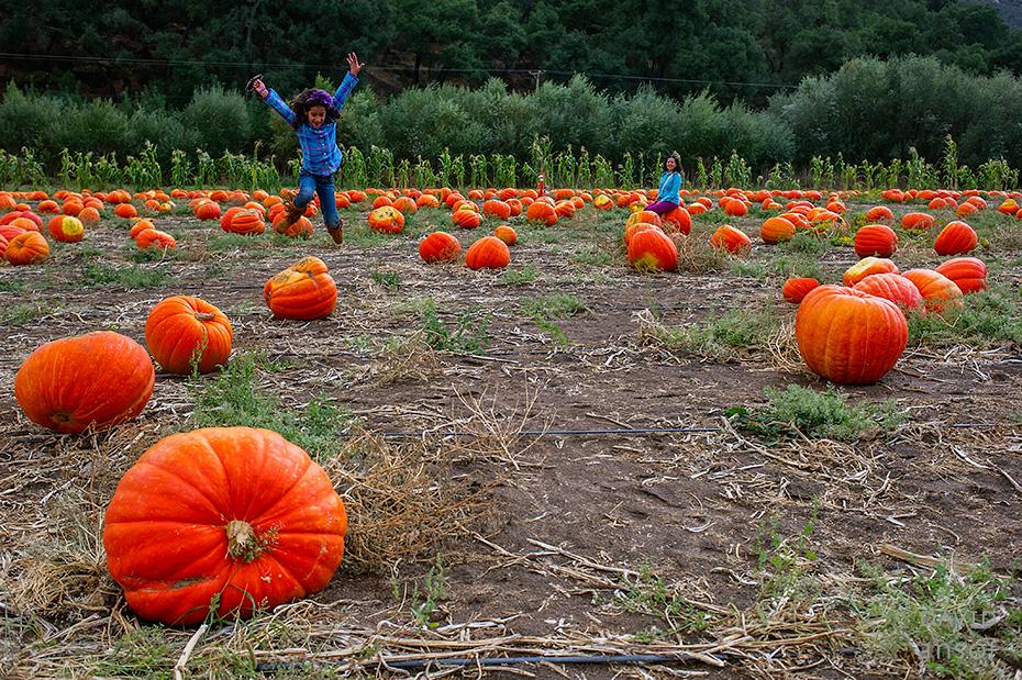 0036_cumple_suegro_bates-nut-farm-pumpkin-patch_101013-edit
