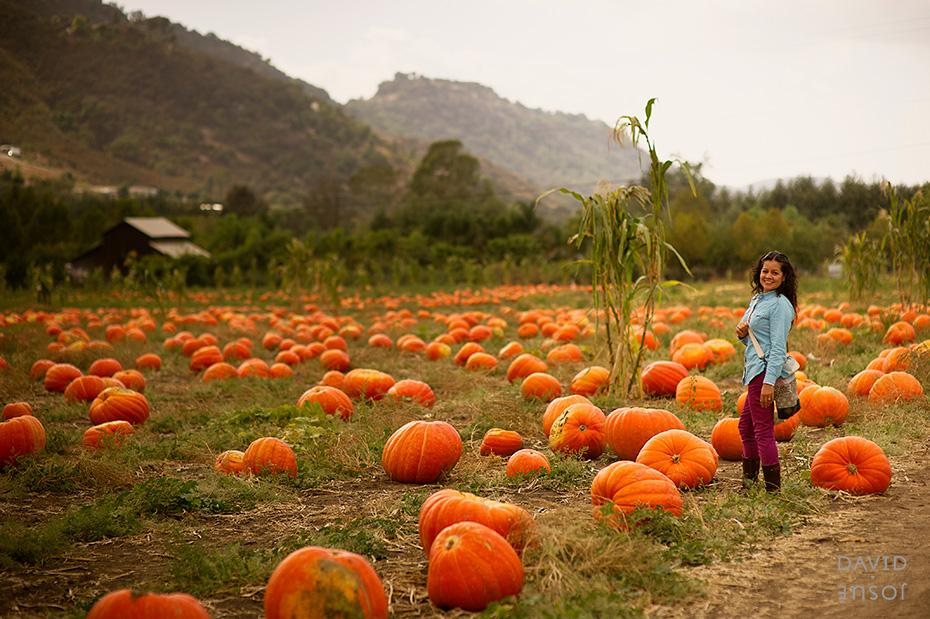 0047_cumple_suegro_bates-nut-farm-pumpkin-patch_101013-edit