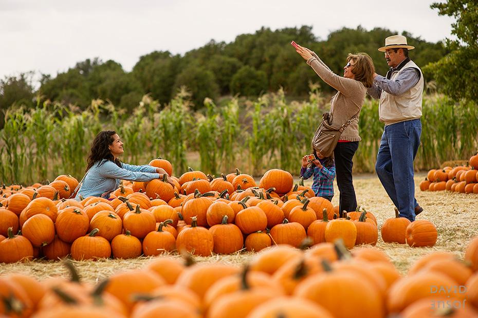 0073_cumple_suegro_bates-nut-farm-pumpkin-patch_101013-edit