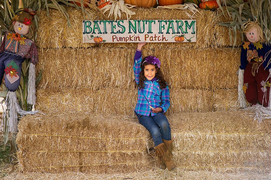 0105_cumple_suegro_bates-nut-farm-pumpkin-patch_101013-edit