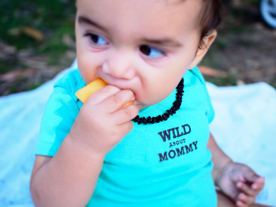 my-pumpkin-picnic-balboa-8
